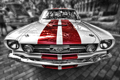 Mustang Fast Back (submit)