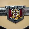 Leyland Tiger Cub