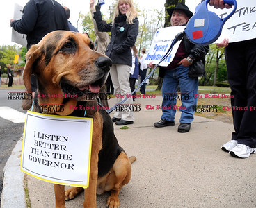 5/1/2012 Mike Orazzi | Staff Isabel Imfeld's bloodhound Macy, 8, wears a sign while sitting with Bristol teachers waiting for Governor Dannel P. Malloy and Lt. Governor Nancy Wyman to arrive for a town hall meeting to discuss the governor's proposed education reforms on Tuesday night in Bristol at the Memorial Blvd. School.