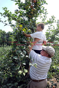 9/1/2012 Mike Orazzi | Staff Ryan Parker,7, and his dad Robert pick Macintosh apples on the first day of pick your own apples Rogers Orchards on Long Bottom Road in Southington. *** for a Diane story ***