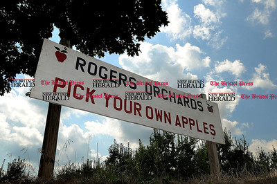 9/1/2012 Mike Orazzi | Staff Rogers Orchards on Long Bottom Road in Southington. *** for a Diane story ***