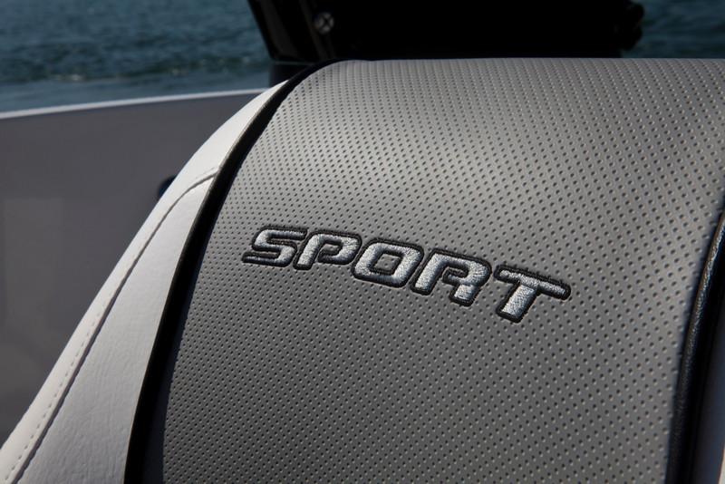 Sea Ray 185 Sport (2012)