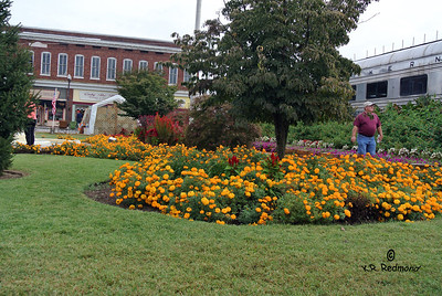 Duck Park in Downtown Sweetwater, Tennessee