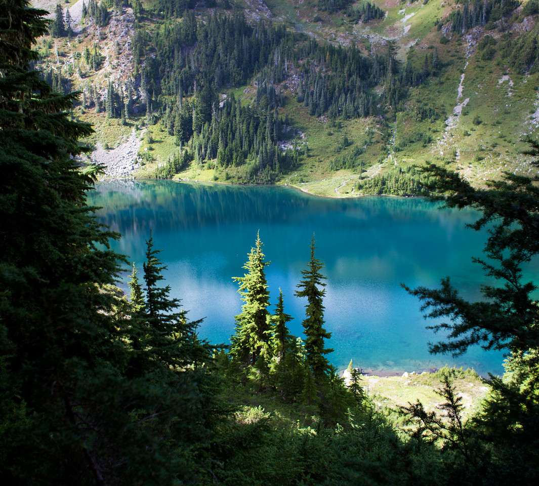 Hoh Lake, Olympic NP