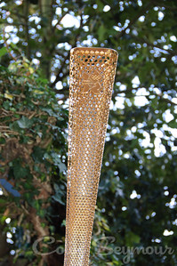 Olympic Torch (3)