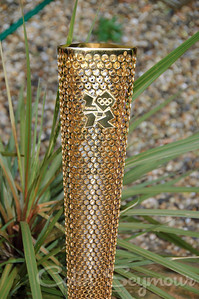 Olympic Torch (38)
