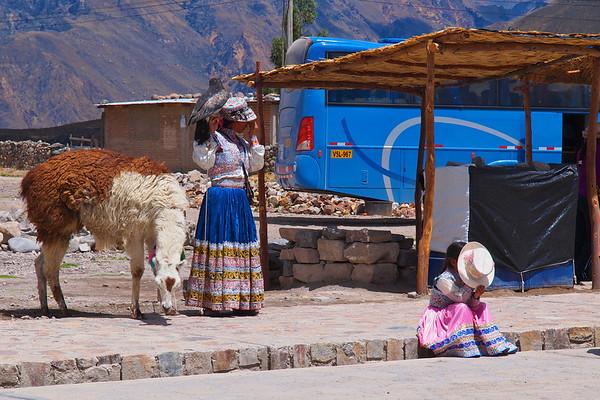 2012 Arequipa