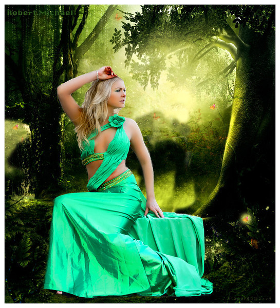 Enchanted Forest -2
