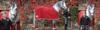 """04SJ JMC_Equestrian_HKM_Reitsport_Sets  <a href=""""http://www.JMC-Equestrian.com"""">http://www.JMC-Equestrian.com</a>"""