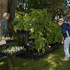 After Spring Fair Plant Sale