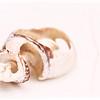 20120420 Tiny Shell