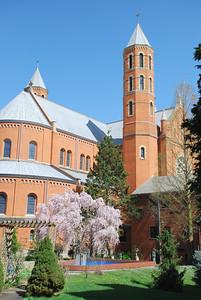2012 Spring
