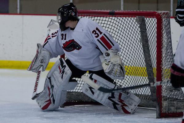 2012 Troy Hockey