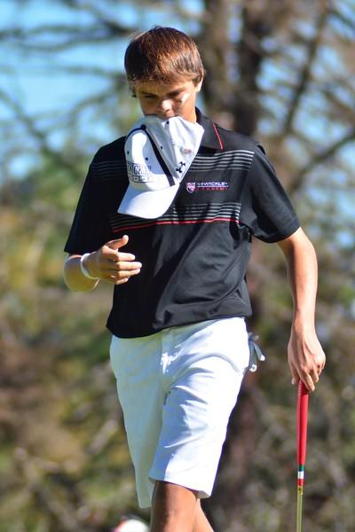 2014 WPIAL Golf Championships