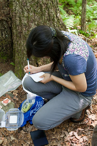 Letterboxing062310-4
