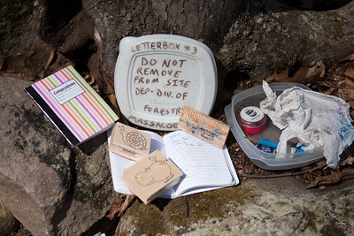 Letterboxing040310-4