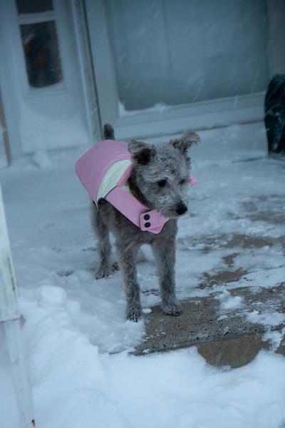 Uni in the Snow