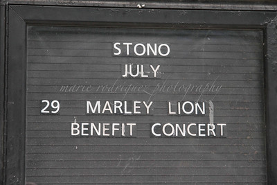 1st Annual Marley Lion 072912025