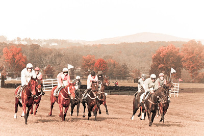 Red Run; VA Gold Cup 2012