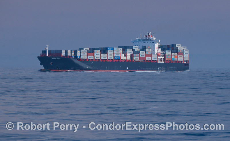 The container vessel 'RHL Felicitas' in the northbound shipping lane of the Santa Barbara Channel.