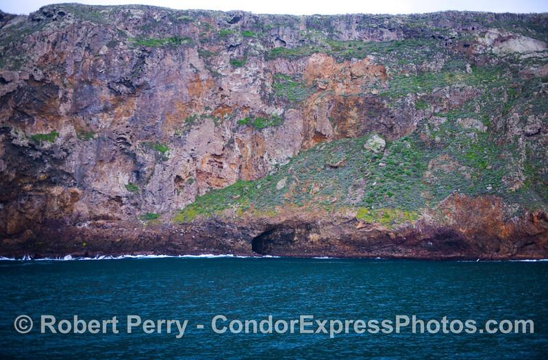 Sea cliffs of Santa Cruz Island showing off their winter greenery.