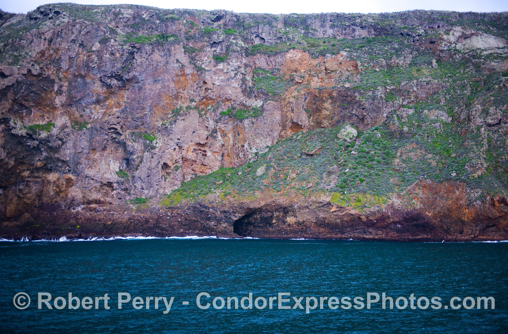 Sea cliffs of Santa Cruz Island showing off their winter greenery.