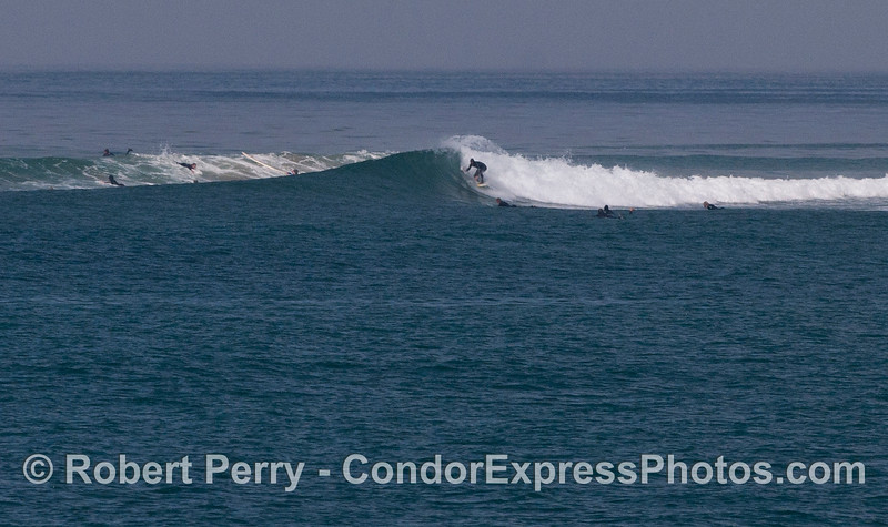 Rincon waves surfing 2012 04-09 SB Channel-010