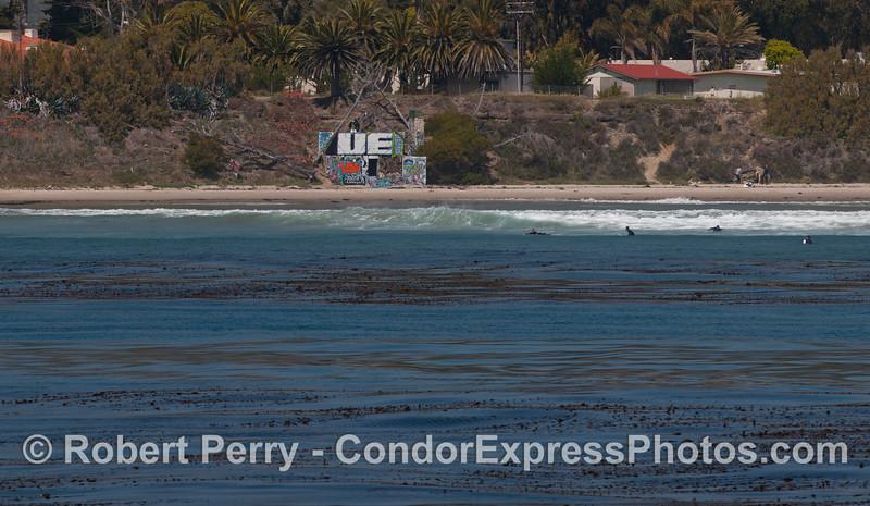 art beach wall 2012 04-09 SB Channel-b-003