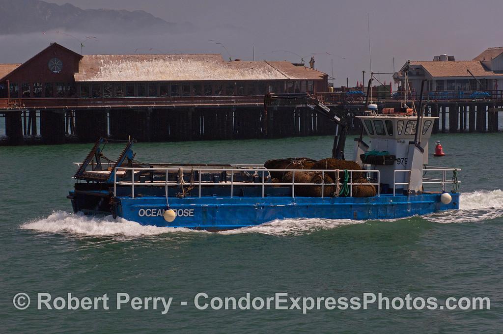 vessel kelp cutter Ocean Rose 2012 04-09 SB Channel-a-003