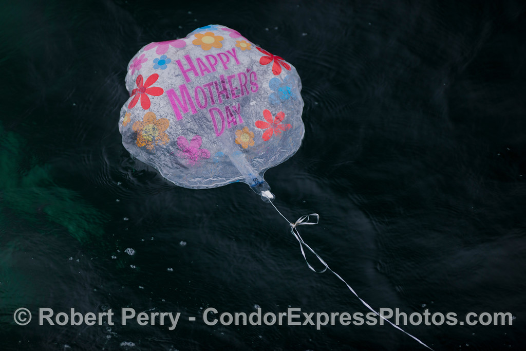 baloon metalic plastic debris 2012 06-02 SB Channel-014