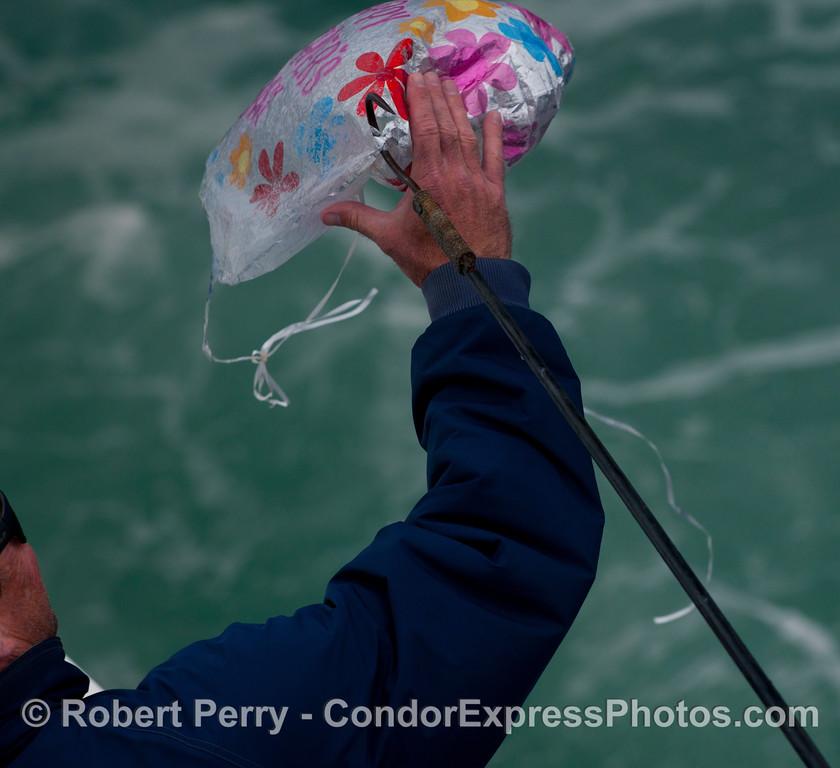 baloon metalic plastic debris 2012 06-02 SB Channel-020
