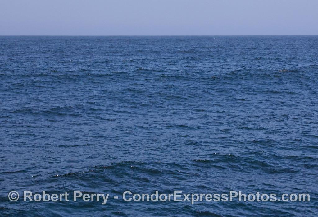 ocean swells 2012 06-09 SB Channel-a-013