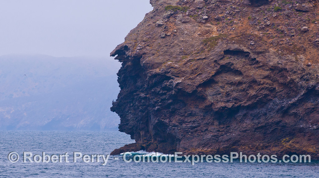 "If you look closely, you will see a Cormorant (<em>Phalocrocorax</em>) sitting on the ""nose"" of the native american's face.  Profile Point, Santa Cruz Island."