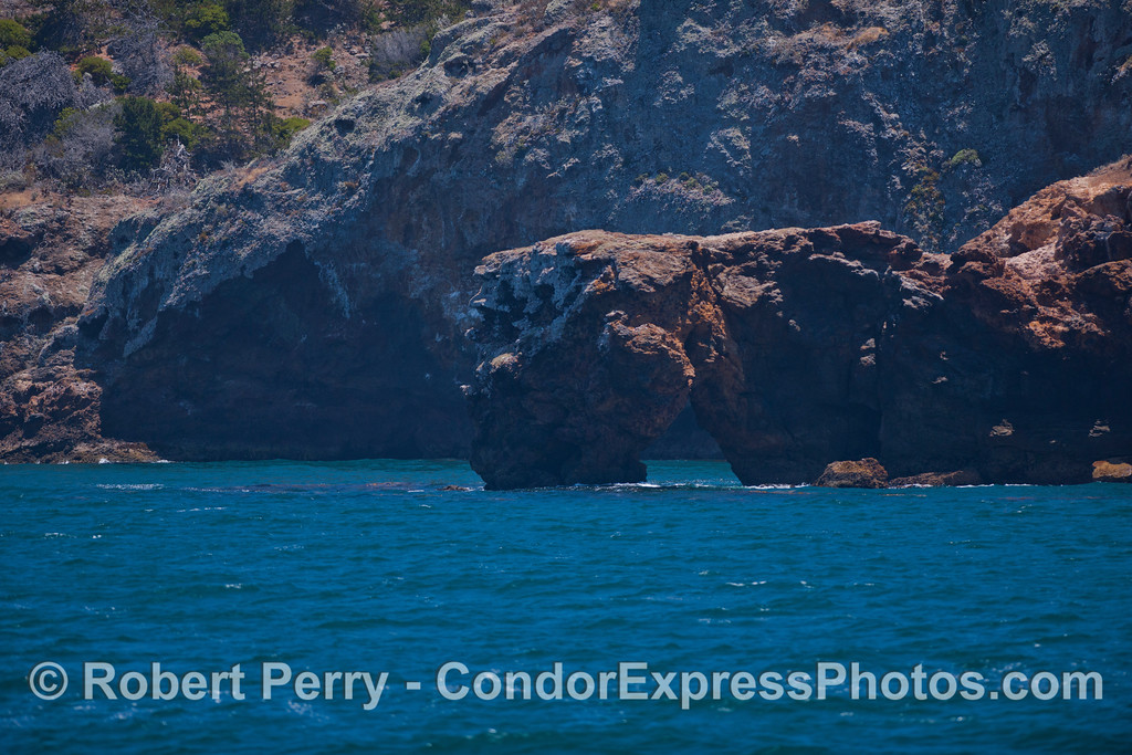 An arch rock formation on the coast of Santa Cruz Island.