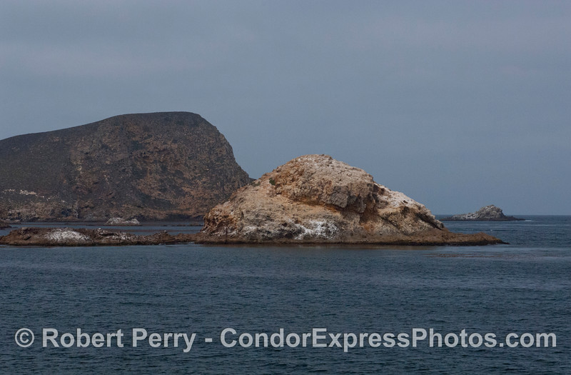 Near the west end of San Miguel Island.