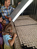The large metal sheet has many tiny holes, each just smaller than a lettuce seed.  A vacuum is used to get one seed on each hole which in turn is spaced just right so that each square gets a single seed when the vacuum is turned off.