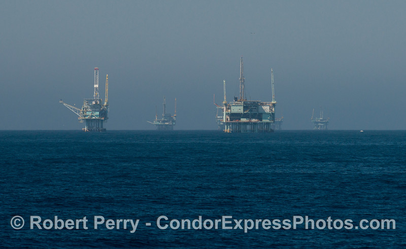 From near to far:  Oil platforms Henry, Hillhouse, A, B, and C.