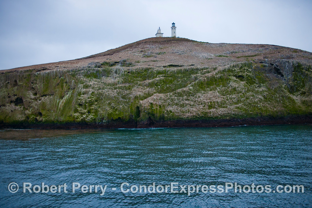 Anacapa Light above sea cliffs 2012 12-22 SB Channel-a-002