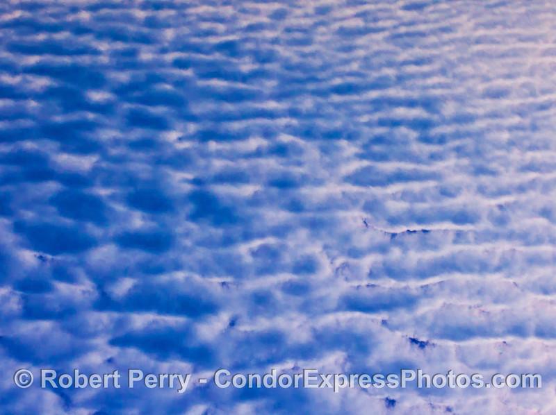 cirrocumulus cloud patterns 2012 12-28 SB Channel-a-005