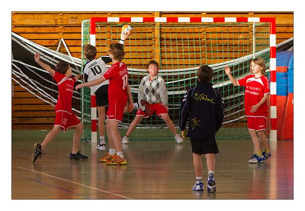 2012_01 Handball