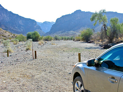 Palm Cave wall in background of Whipple Wash Trailhead