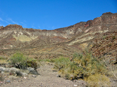 Turtle Mountain central mesa from Mopah Spring Wash