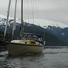 Motoring through the Fjordlands of the Great Bear Rainforest