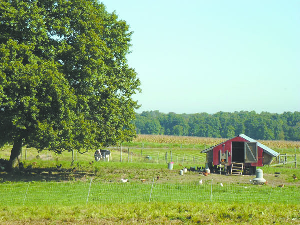 Debbie Wachter/NEWS<br /> A view of the Henrys' organic farm on Columbiana Road in North Beaver Township.