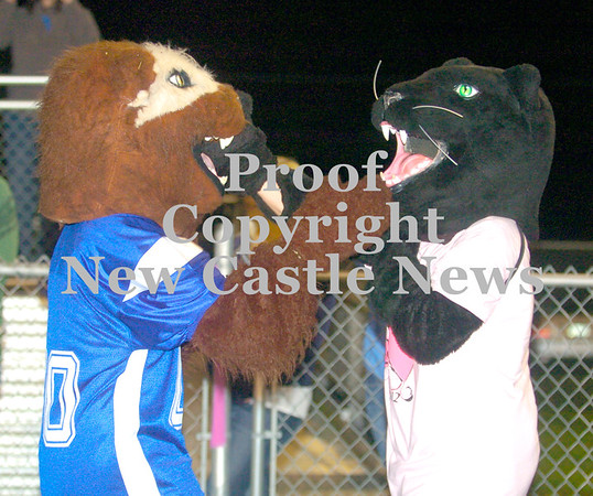Erica Galvin/NEWS<br /> The Ellwood City mascot, the wolverine jokingly gets into a fist fight with Riverside's mascot, a panther.