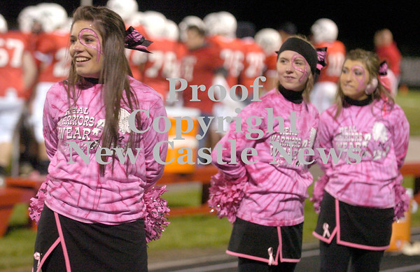 Erica Galvin/NEWS<br /> Mohawk cheerleaders show off their pink in support of breast cancer awareness month.