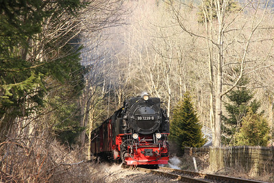 23rd - 26th March 2012 Harz