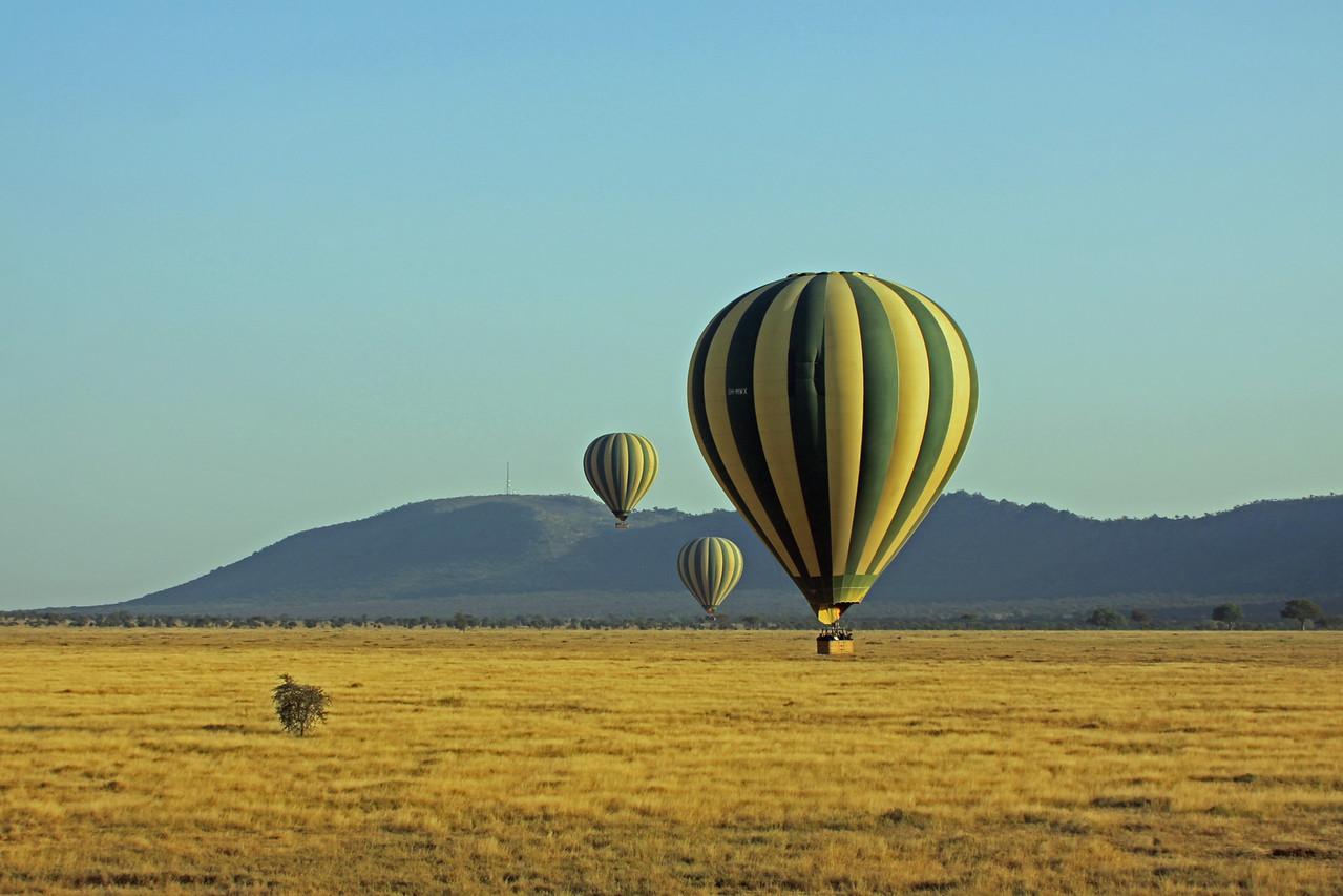 Serengeti - Balloon Flight