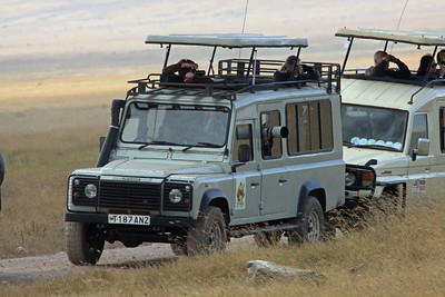 Ngorongoro - Getting the shot