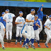 Tribune-Star/Jim Avelis<br /> It's gone: The Sycamore bench, including Jon Hedges, center, reacts to Ryan Walterhouse's game ending home run.